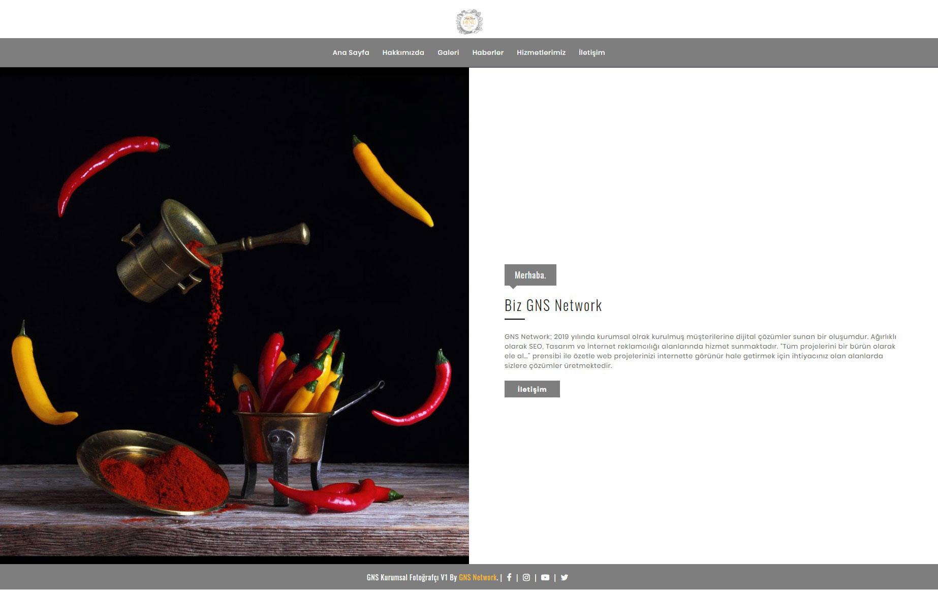 GNS Cafe & Fast Food Sitesi Yazılımı 2