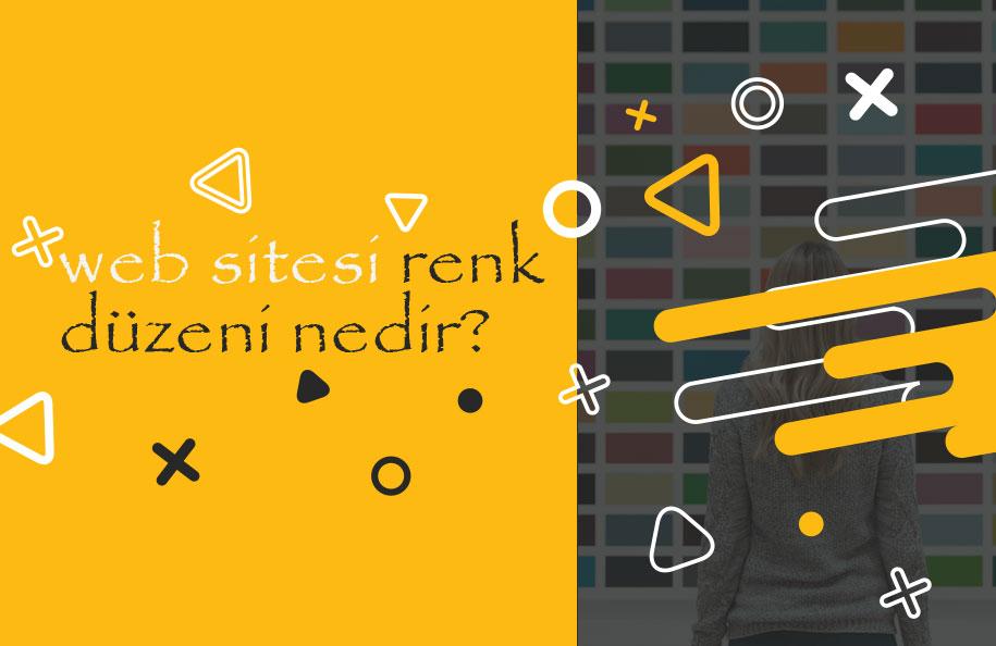 Web sitesi renk düzeni nedir?